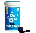 Mona Lisa Power Flower Blue Container CLR-19429-999
