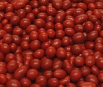 Sconza Boston Baked Beans
