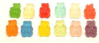 Albanese Gummi Wild Bears 12 Flavors Assorted Colors