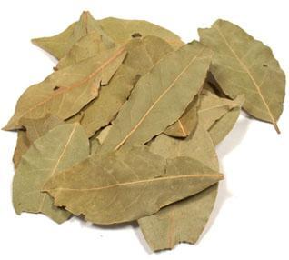 Bay Leaves (Turk Laurel) Large Pack